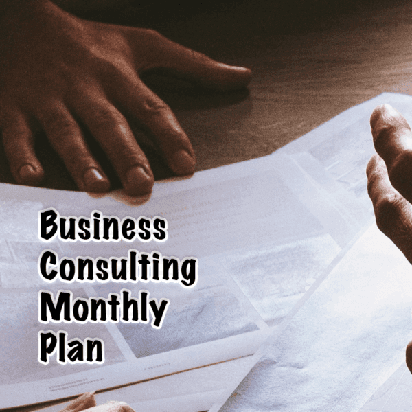 Business Consulting Monthly Plan